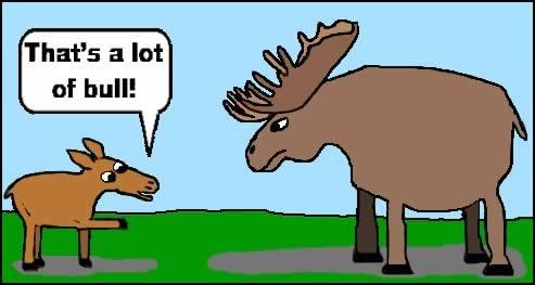 Moose Puns | Kappit